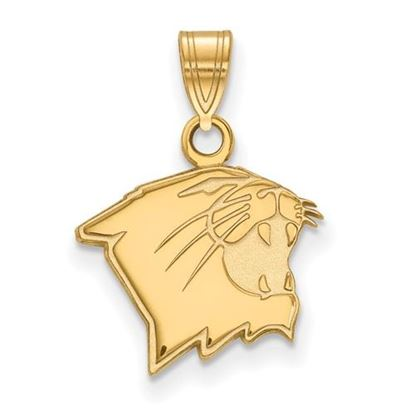Picture of Northwestern University Wildcats 14k Yellow Gold Small Pendant