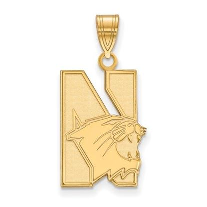 Picture of Northwestern University Wildcats Sterling Silver Gold Plated Large Pendant