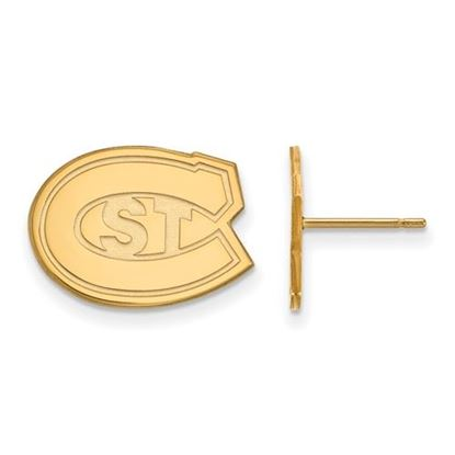 Picture of St. Cloud State University Huskies 10k Yellow Gold Small Post Earrings