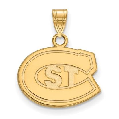 Picture of St. Cloud State University Huskies 10k Yellow Gold Small Pendant