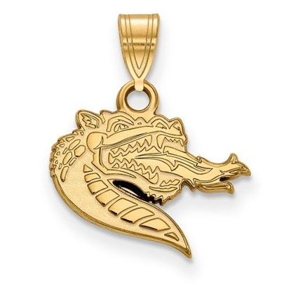 Picture of University of Alabama at Birmingham Blazers Sterling Silver Gold Plated Small Pendant
