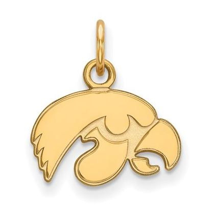 Picture of University of Iowa Hawkeyes Sterling Silver Gold Plated Extra Small Pendant