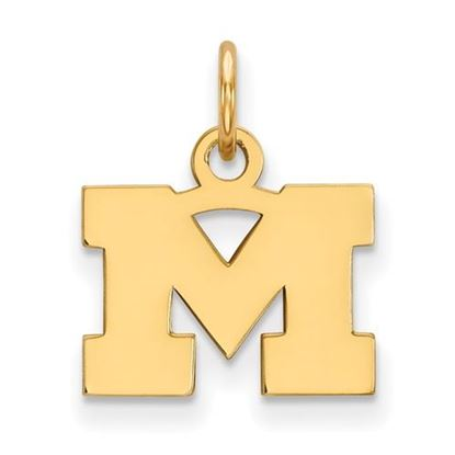 Picture of University of Michigan Wolverines Sterling Silver Gold Plated Extra Small Pendant
