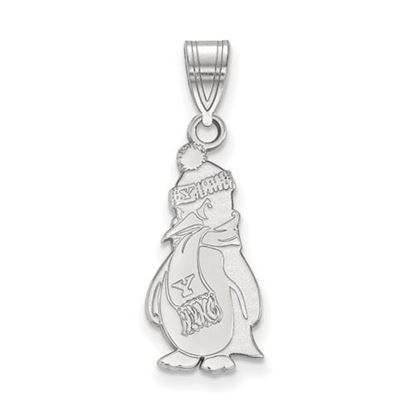 Picture of Youngstown State University Penguins 14k White Gold Large Pendant