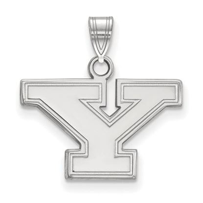 Picture of Youngstown State University Penguins 14k White Gold Small Pendant