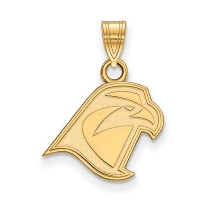 Picture of Bowling Green State University Falcons Sterling Silver Gold Plated Small Pendant