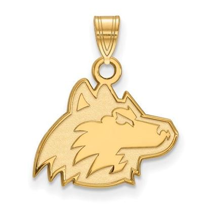 Picture of Northern Illinois University Huskies Sterling Silver Gold Plated Small Pendant