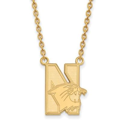 Picture of Northwestern University Wildcats Sterling Silver Gold Plated Large Necklace