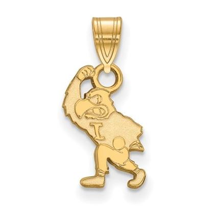 Picture of University of Iowa Hawkeyes Sterling Silver Gold Plated Small Pendant