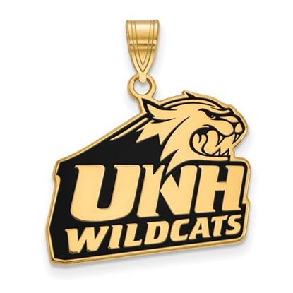 Picture of University of New Hampshire Wildcats Sterling Silver Gold Plated Large Enameled Pendant