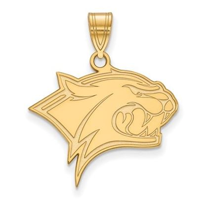 Picture of University of New Hampshire Wildcats Sterling Silver Gold Plated Large Pendant