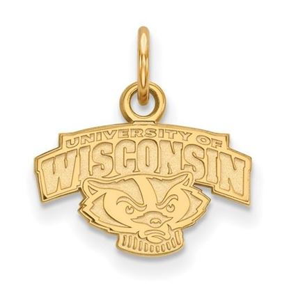 Picture of University of Wisconsin Badgers Sterling Silver Gold Plated Extra Small Pendant