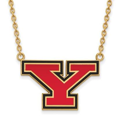 Picture of Youngstown State University Penguins Sterling Silver Gold Plated Large Enameled Necklace