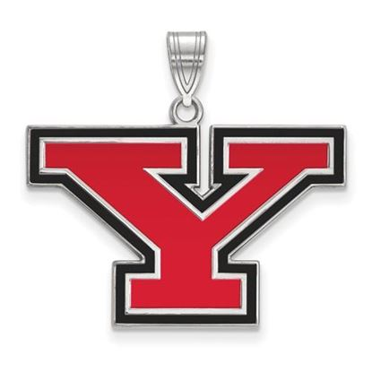 Picture of Youngstown State University Penguins Sterling Silver Large Enameled Pendant