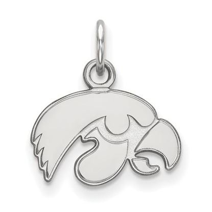Picture of University of Iowa Hawkeyes Sterling Silver Extra Small Pendant
