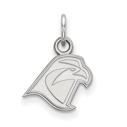 Picture of Bowling Green State University Falcons Sterling Silver Extra Small Pendant